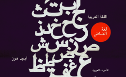 Manuscripts and Printed Books in Arabic Script in the Age of the E-Book: The Challenges of Digitization